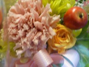 2010131flower2_3